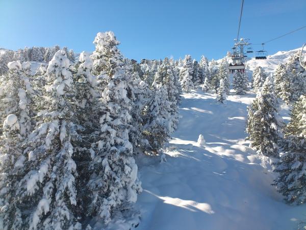1. Dezember 2012 frisch verschneiter Arvengarten